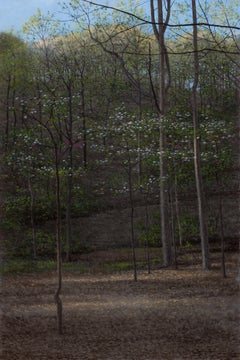 Dogwoods, Flowering Dogwood Trees in a Wooded Landscape, Oil on Panel