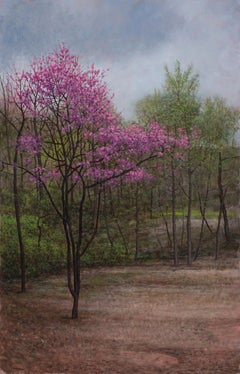 Redbud, Wooded Landscape with Blooming Redbud in Early Spring , Oil on Panel