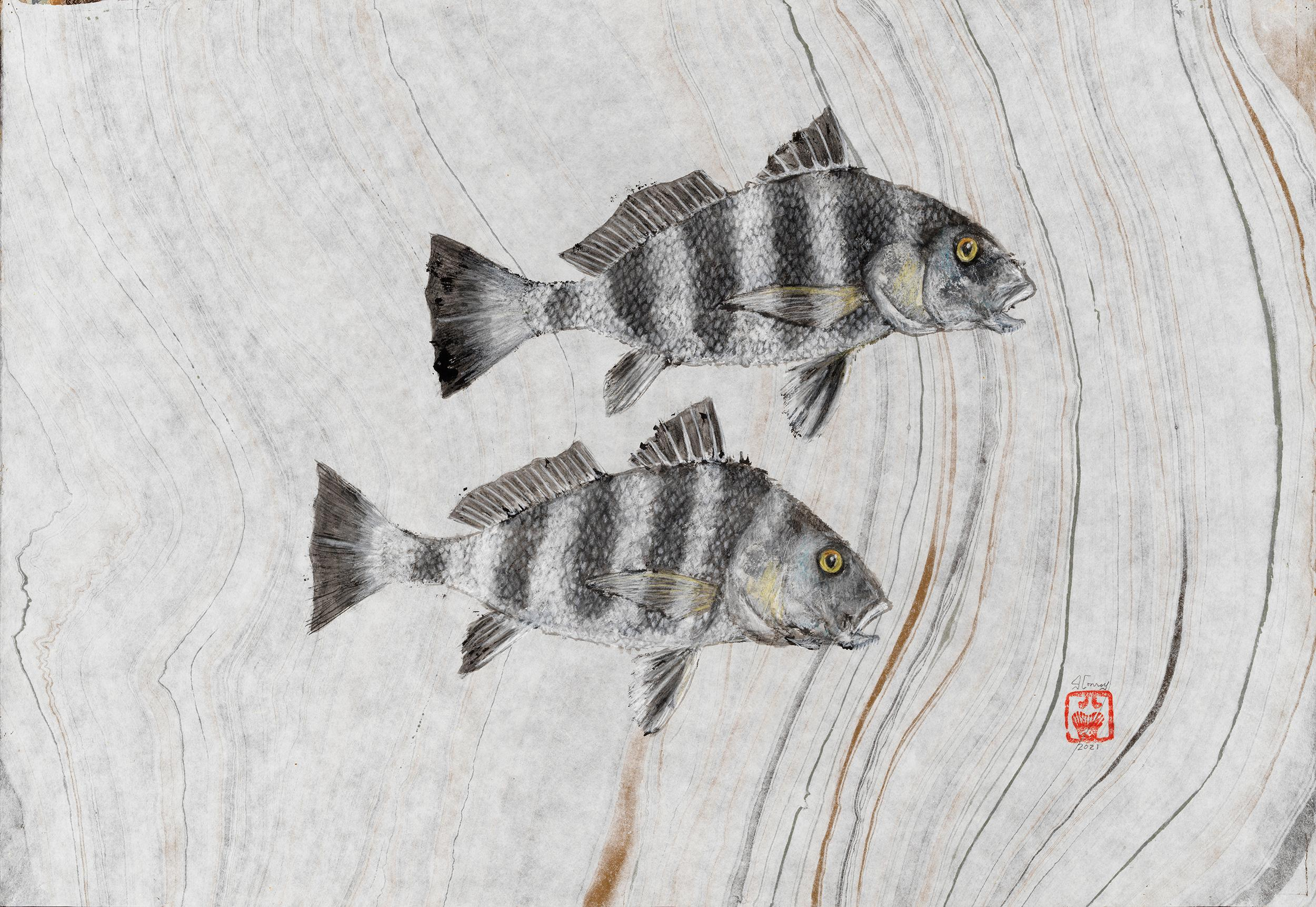 Two Drums -Japanese Style Gyotaku Painting on Mulberry Paper of Two Striped Fish