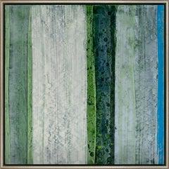 The Five Senses: Blue Spruce