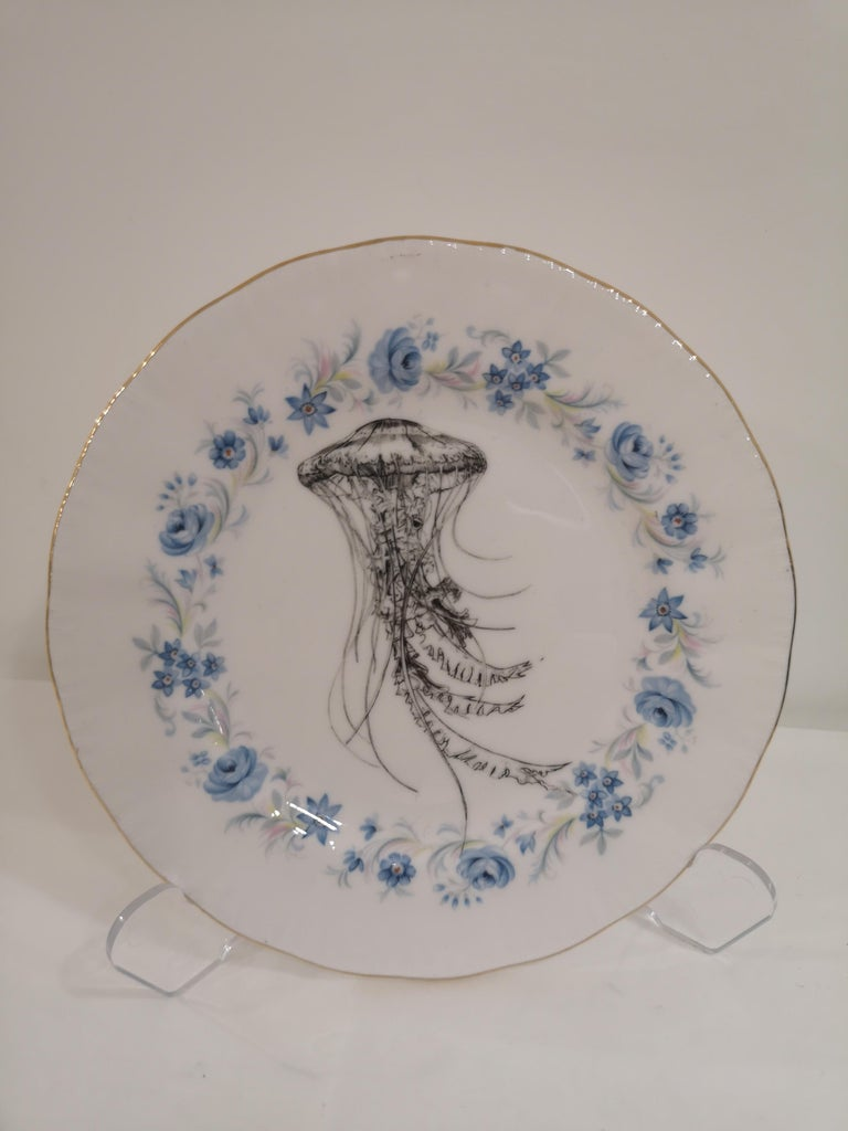 Gray Jellyfish dish For Sale
