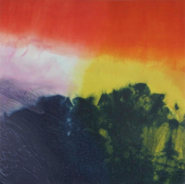 Jennifer Wolf Abstract Photograph - Dye Painting #9