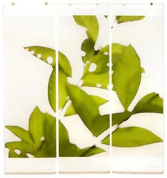 Canopy (Lake Lotus): Abstracted Still Life Photograph of Green Leaves on White