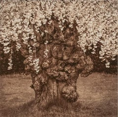 Flowering Tree (Contemporary Rustic Still Life Photo in Black and White)