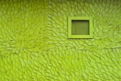 """""""Green (Leaf Wall)"""" - Southern Documentary Photography - Christenberry"""