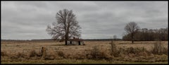 """""""HWY 80, House & Tree, Dallas County, AL"""" - Southern Photography - Christenberry"""