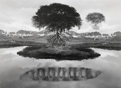 Jerry Uelsmann, Untitled, 1969 [floating tree], vintage silver print