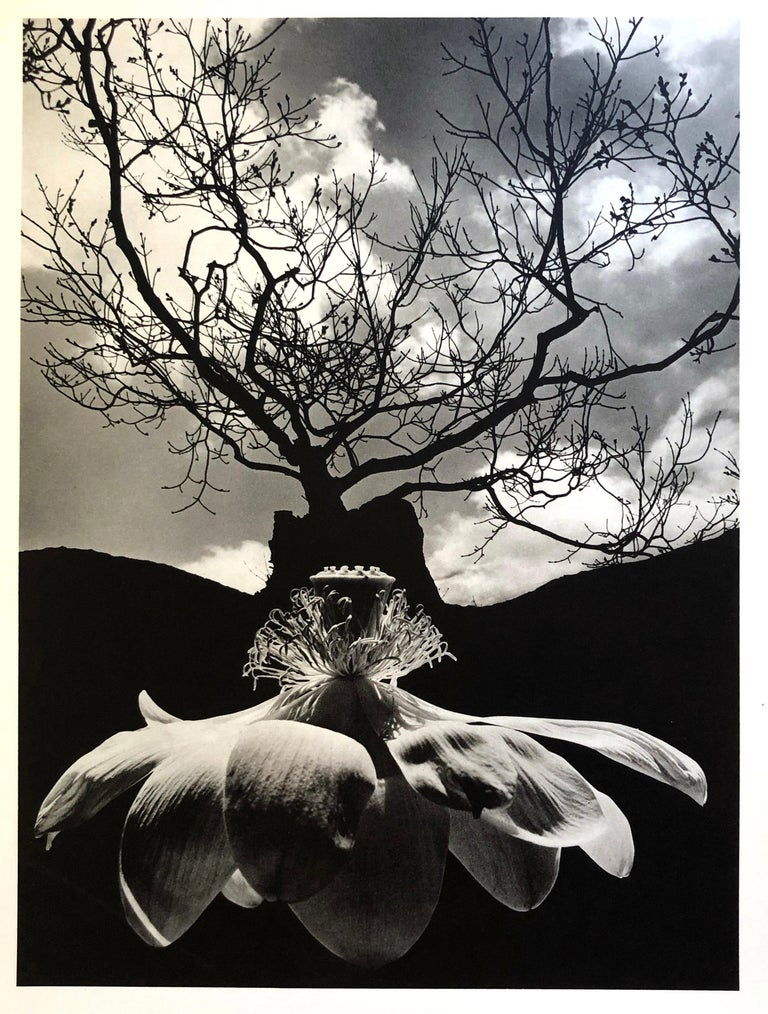A set of 8 Prints by Jerry Uelsmann Surreal Figurative Photography 1970 Framed For Sale 8