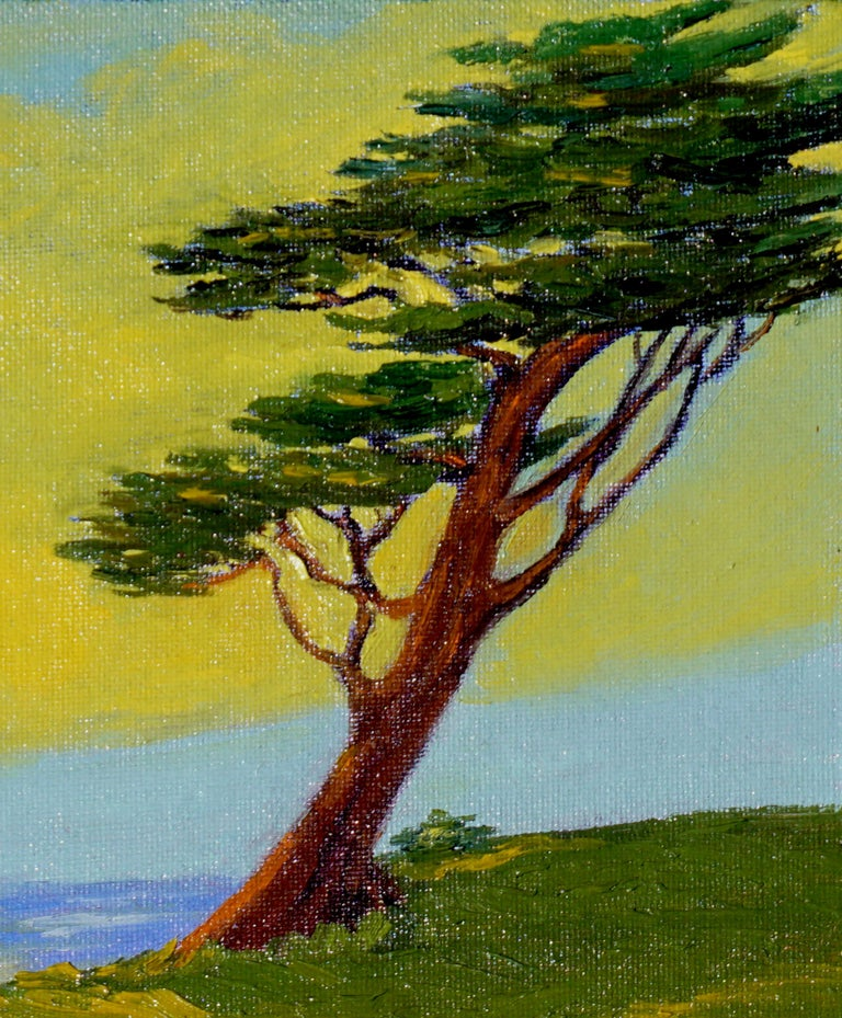 Monterey Cypress Sunset - Painting by Jesse Don Rasberry