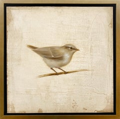 Perched I by Jessica Pisano, Contemporary Bird Painting on Board