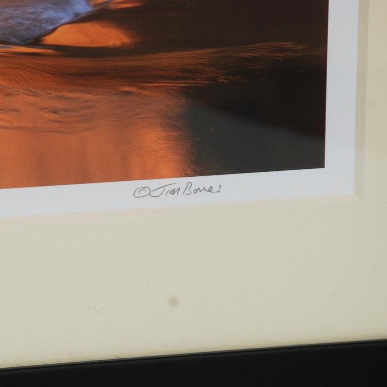 Modern Jim Bones Photograph of Mariscal Canyon For Sale