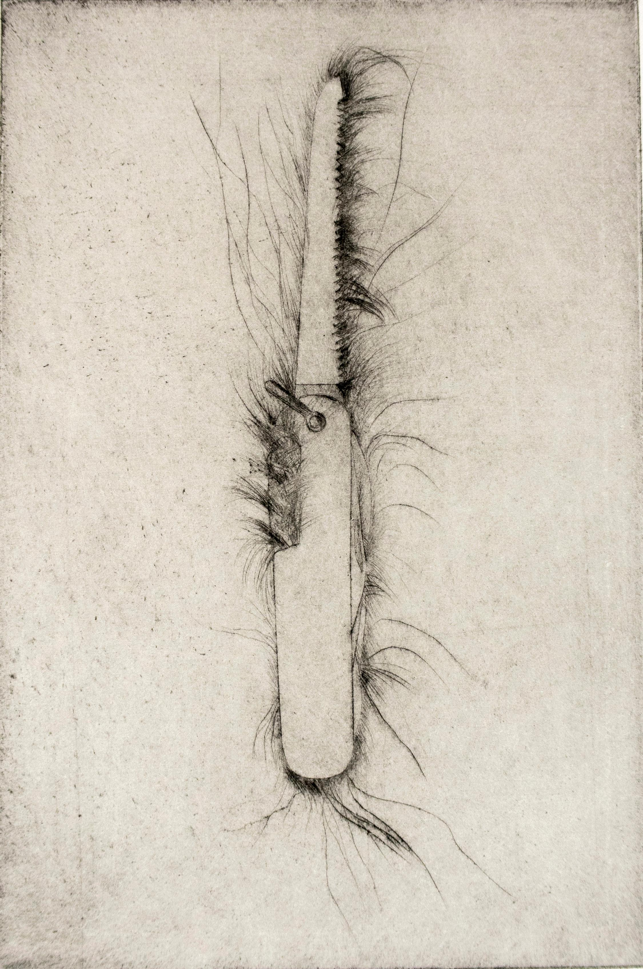 Drypoint: Hand saw by Jim Dine, black and white tool still life sketch