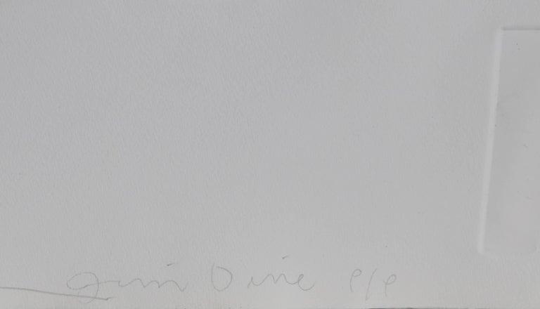Photographs and Etchings, Jim Dine and Lee Friedlander Portfolio 1969 For Sale 8