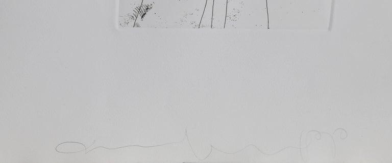 Photographs and Etchings, Jim Dine and Lee Friedlander Portfolio 1969 For Sale 13
