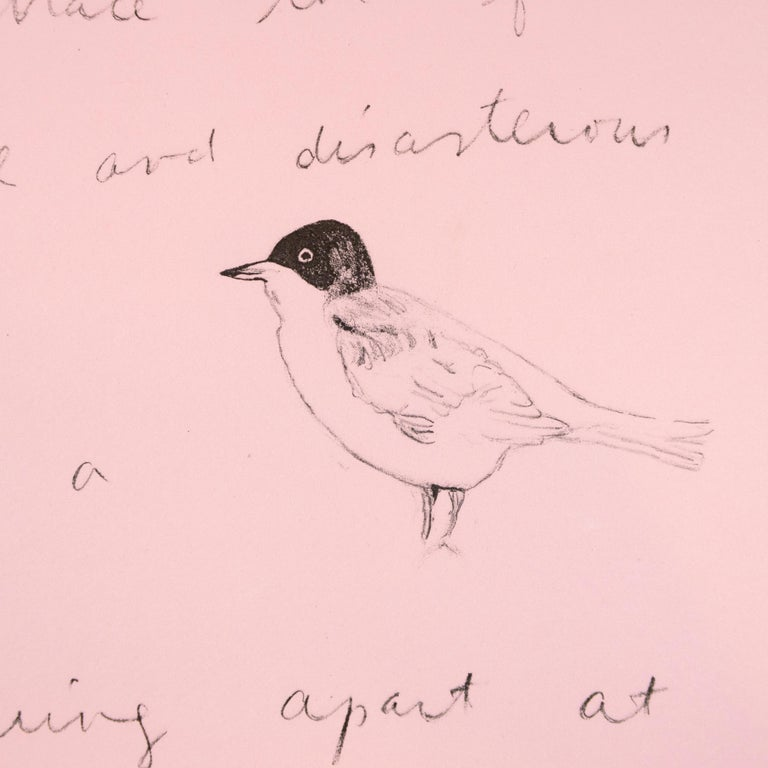 So I lean back (Oo La La) Jim Dine lithograph and Ron Padgett poetry pink bird For Sale 1