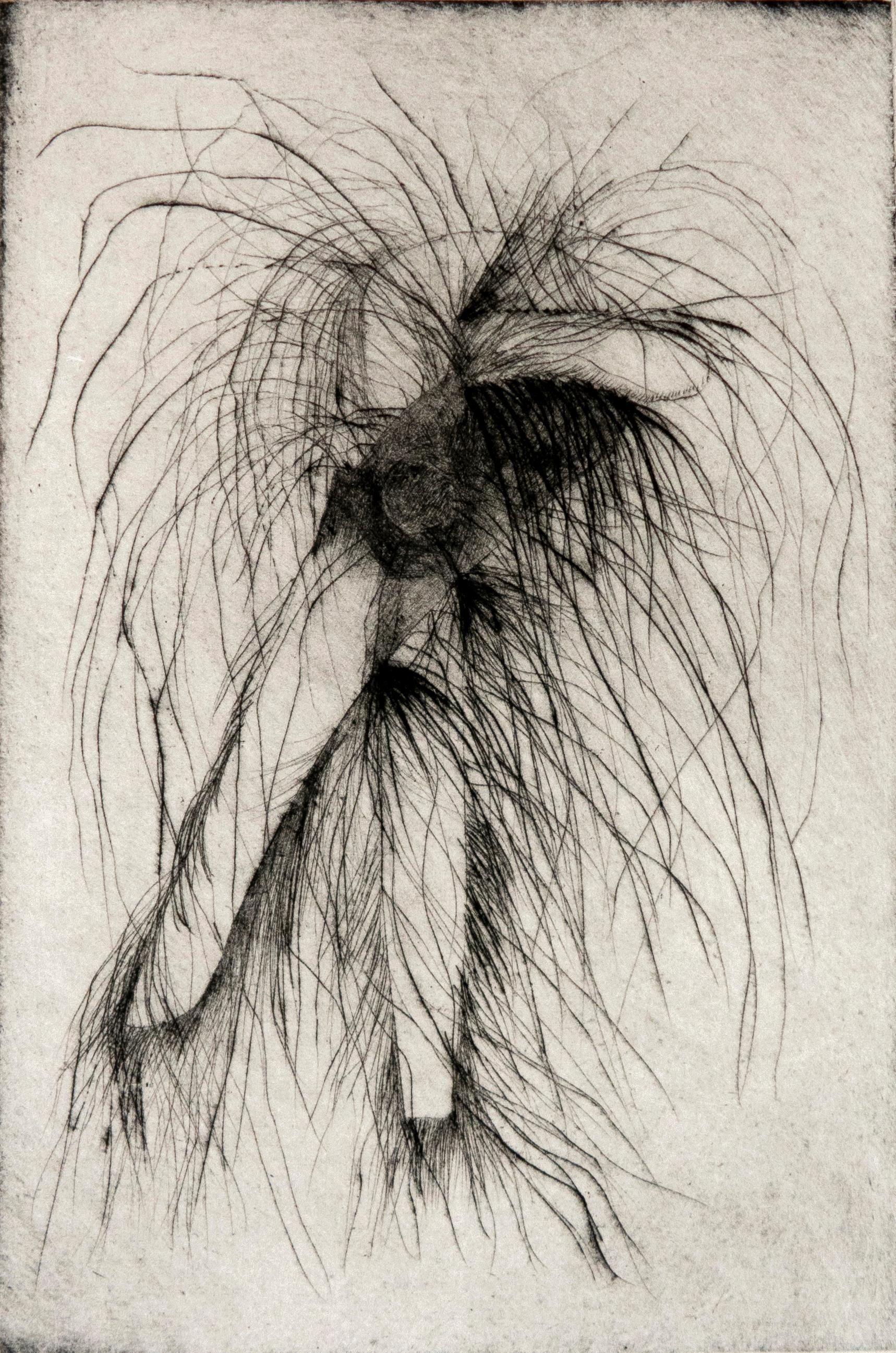 Tool Drypoint: Wrench by Jim Dine, black and white tool still life sketch