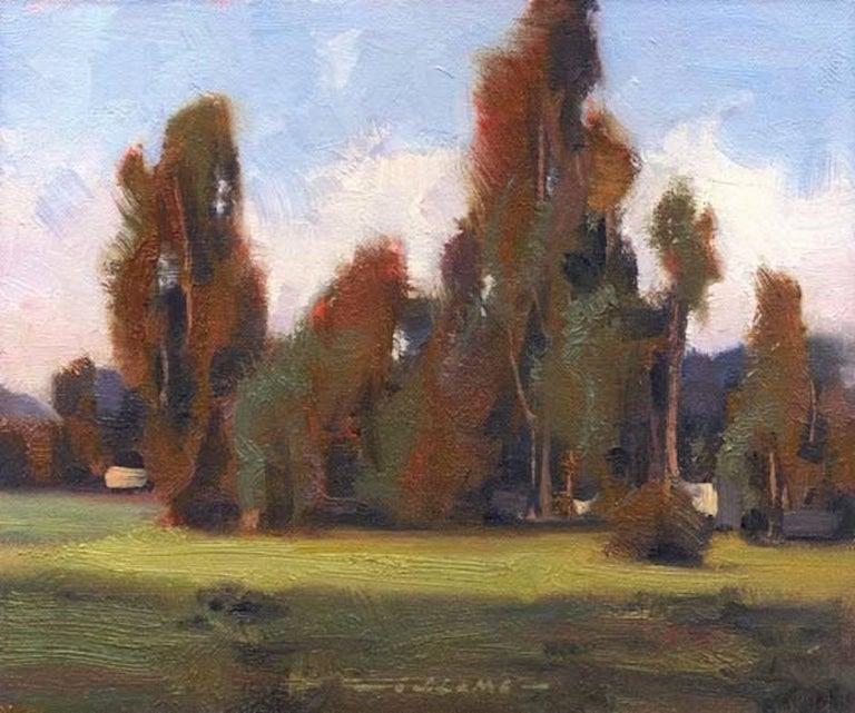 Jim Lamb Landscape Painting - Eucalyptus Grove, Sonoma