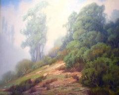 Laguna Fog