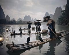 XXII 467 // XXII China Comorants