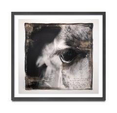 Giraffe's Eye, Kenya, Elephant, Painting, Photography, Mixed Media