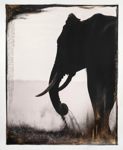 Guardian of Eden, Kenya, Elephant, Painting, Photography, Mixed Media