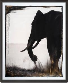 Guardian of Eden, Kenya, Elephant, Painting, Photography, Mixed Media