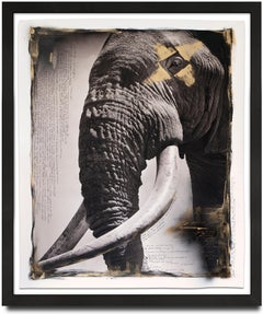 Tim - the Gentle Giant hand painted, Elephant, Mixed Media