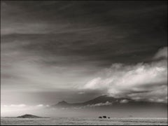 A glimpse into Paradise wildlife, b&w photography, landscape, Africa