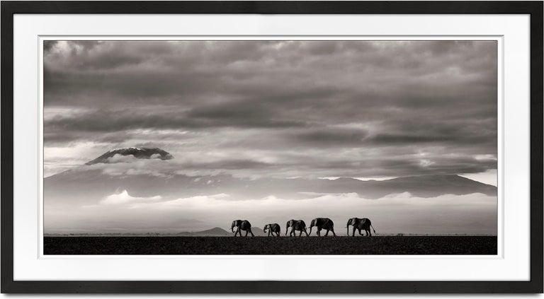 Joachim Schmeisser Landscape Photograph - Beyond II, Kenya, Elephant, wildlife, b&w photography