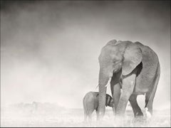 Connected, Kenya, Elephant, wildlife, b&w photography
