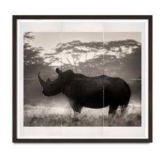 Cut in Stone, Kenya, Rhino, Photography, Platinum Palladium