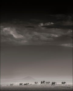 Elephant Family in front of Kilimanjaro II, Kenya, b&w photography, wildlife