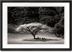 Midday in Rift Valley, Tanzania, Family, b&w, Landscape