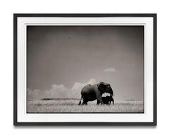 Elephant mother and calf, Kenya, wildlife, black & white photography
