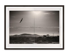 Once upon a Time, Kenya, Elephant, Photography, Platinum Palladium