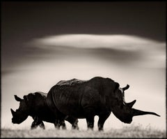 Rhino couple in front of Mount Kenya, Kenya 2019, wildlife, b&w photography
