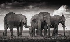 Sleeping family, Kenya