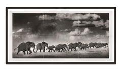 Thunderstorm, Kenya, Elephant, Photography, Platinum Palladium, Landscape