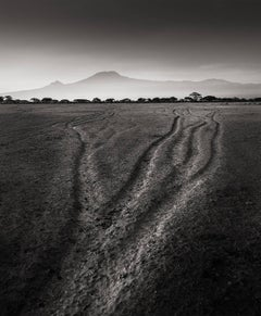 Tracks of the last Giants, Kenya 2017