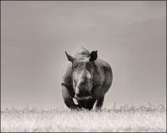 Two seconds left, Kenya, Rhino, wildlife, b&w photography