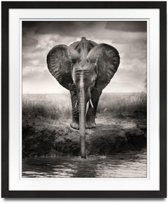 Young boy drinking, Kenya, b&w photography, wildlife, elephant