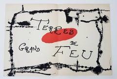 Terres Grand de Feu (one plate from Artigas)