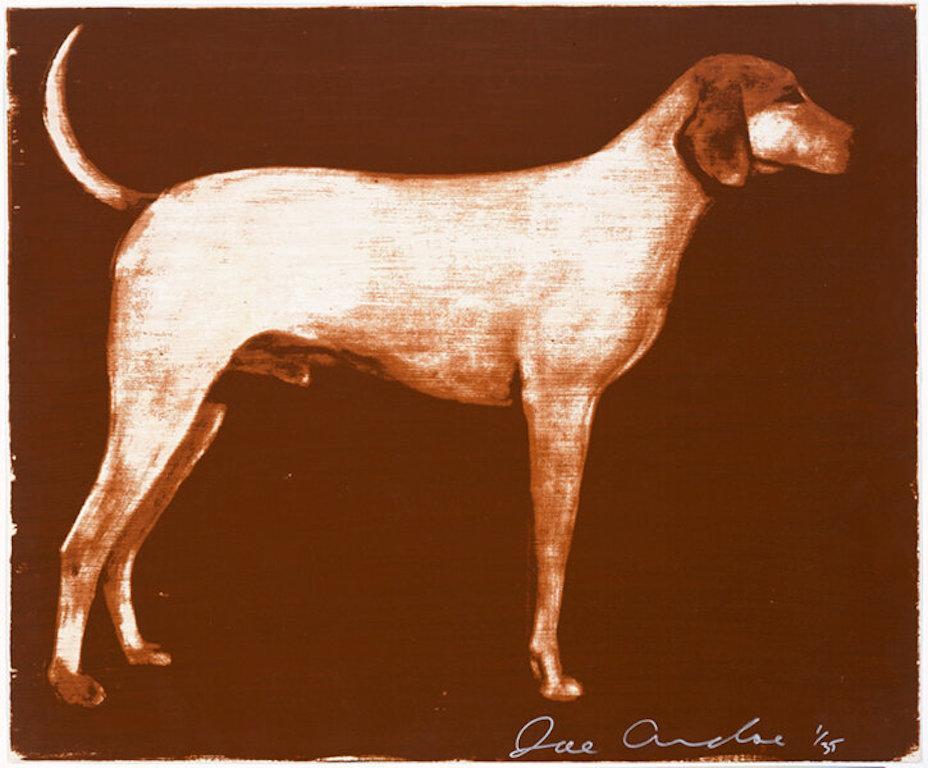 Medium Dogs 1