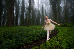 Ballerina in the Foggy Forest