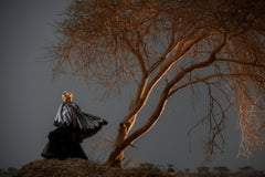 Fashion in the Desert Tree