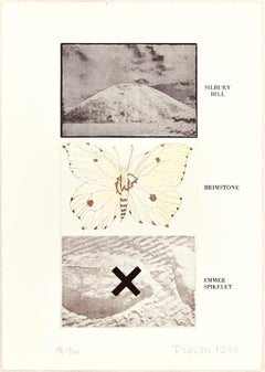 Silbury Hill, Brimstone, Emmer Spikelet - Original Erching by Joe Tilson - 1976