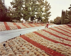 Beverly Hills, California, May 1979 - Joel Sternfeld (Colour Photography)