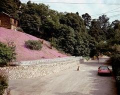 Rustic Canyon, Santa Monica, California, May 1979 - Joel Sternfeld (Colour)
