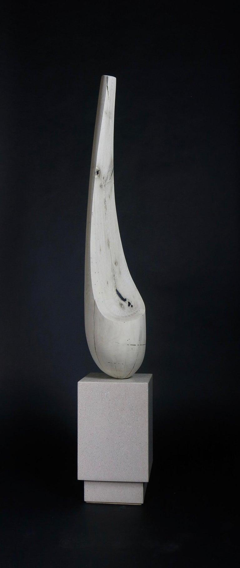 Joel Urruty Still-Life Sculpture - Sassu