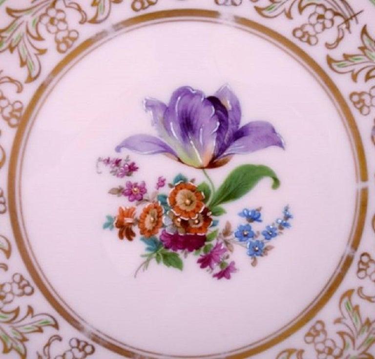 Victorian Johann Haviland Bavaria, Germany, 14 Decorative Plates in Hand Painted Porcelain For Sale